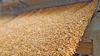 USA - grain loading case study