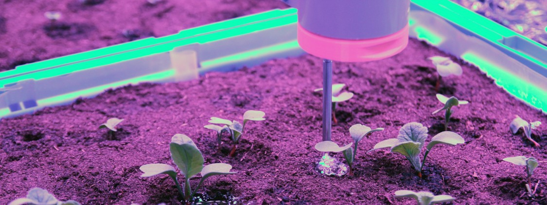 Automatic watering. Each plant gets exactly what it needs.