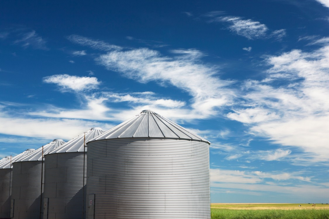 USA - ethanol case study