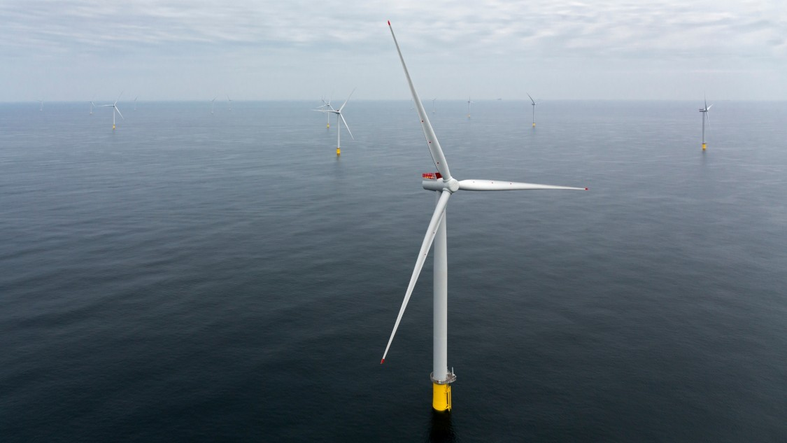 Offshore turbines on sea