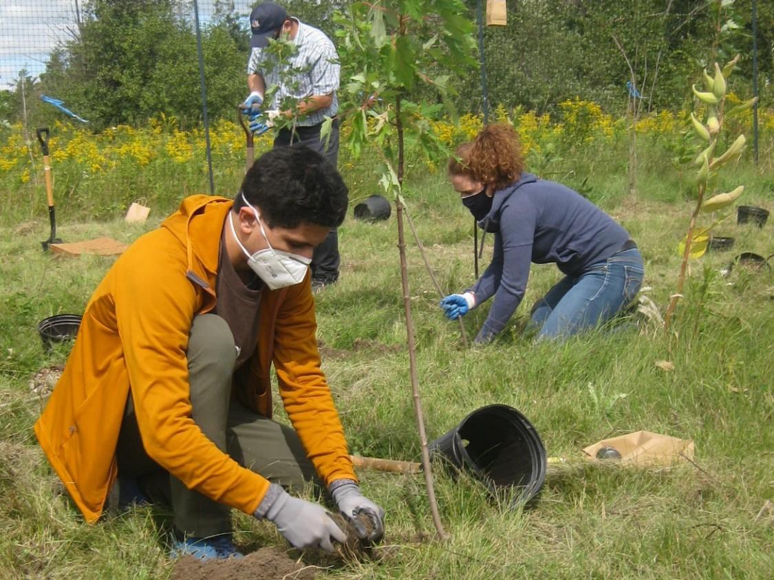 World-environment-day-2021-nachhaltigkeit-baumpflanzaktion-kanada-mitarbeiter