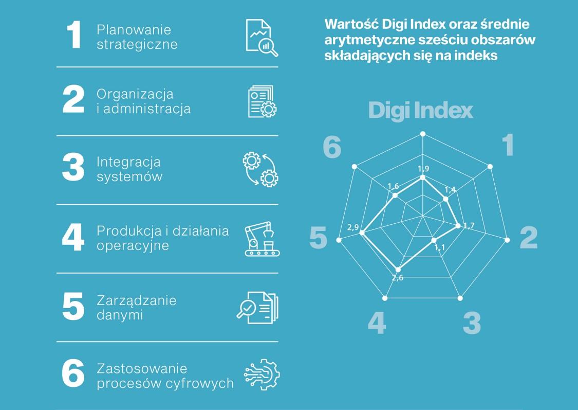digi index obszary strategiczne
