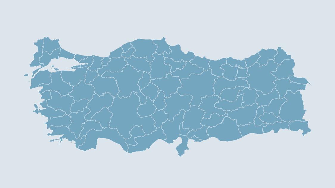türkiye bölgesel organizasyom