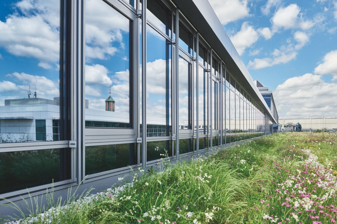 Siemens Management