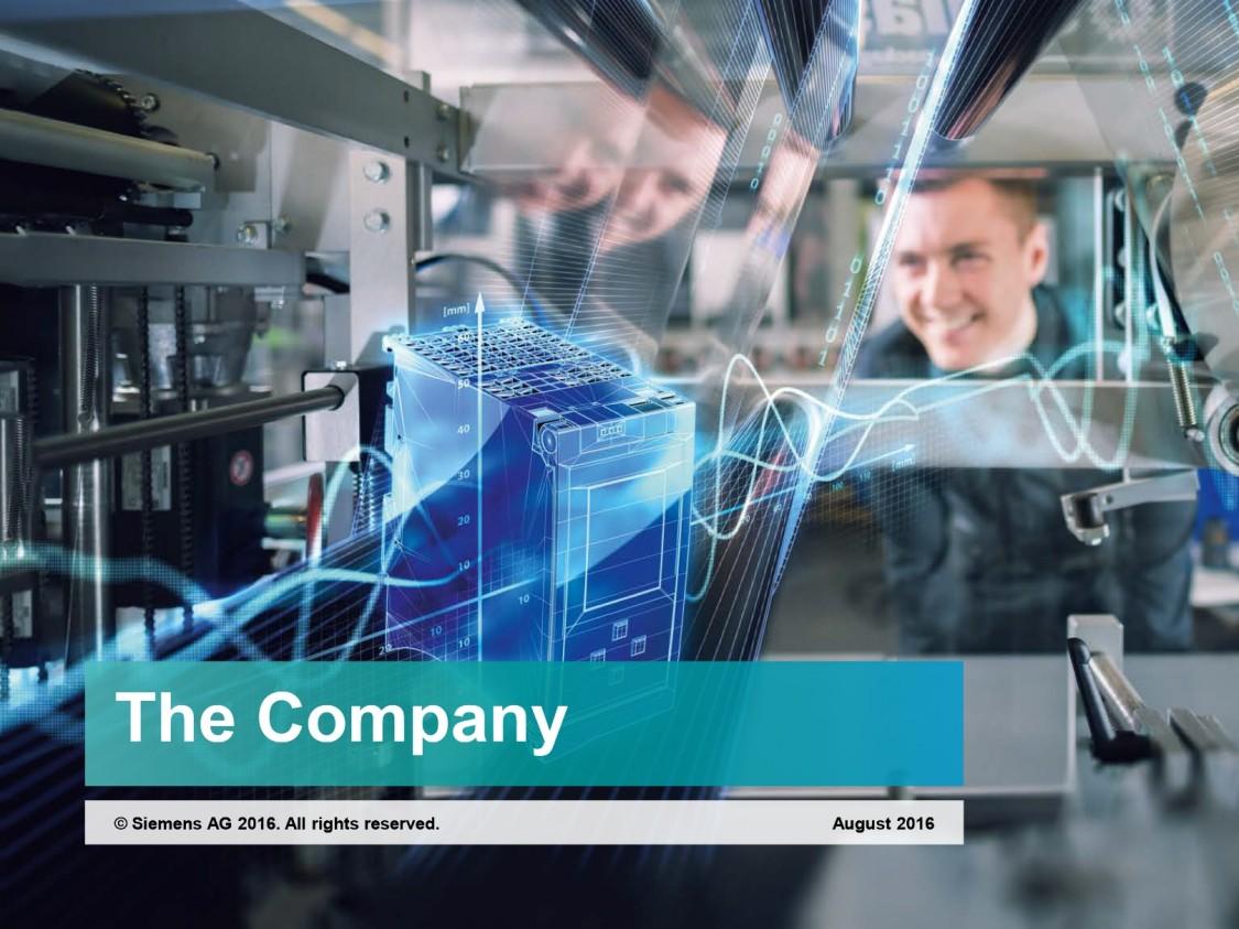The Company 2016