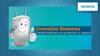 Conexión Siemens