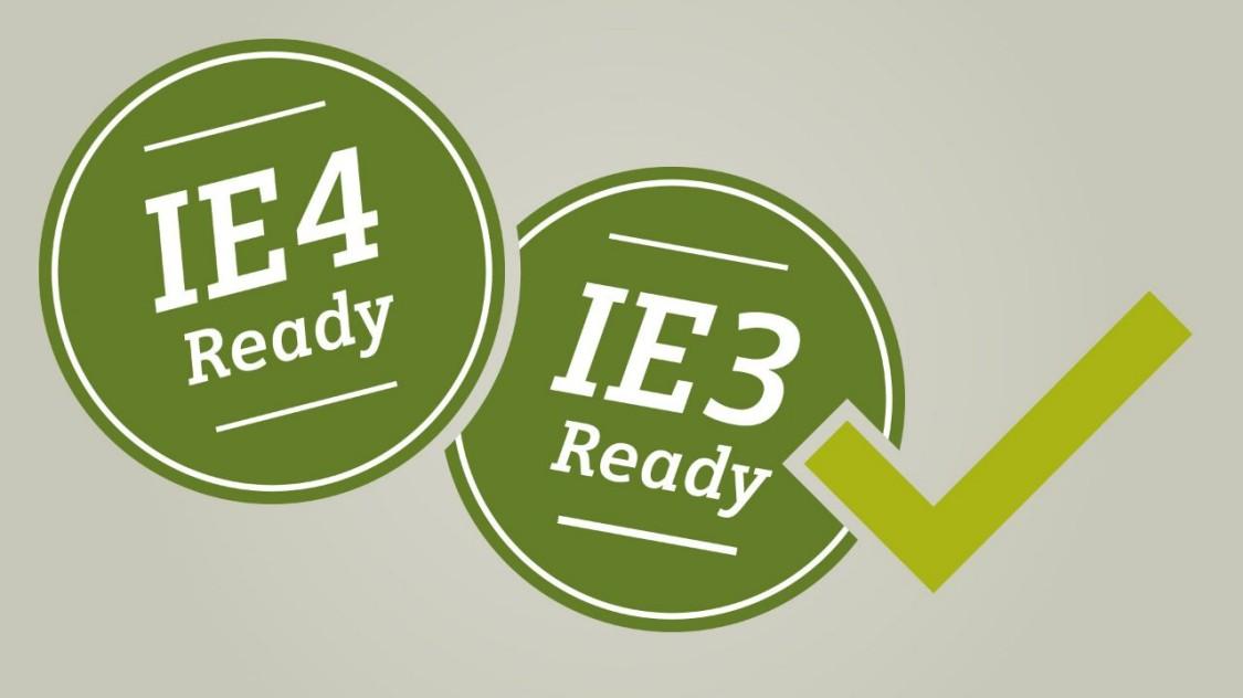 Вы готовы к IE3 / IE4?