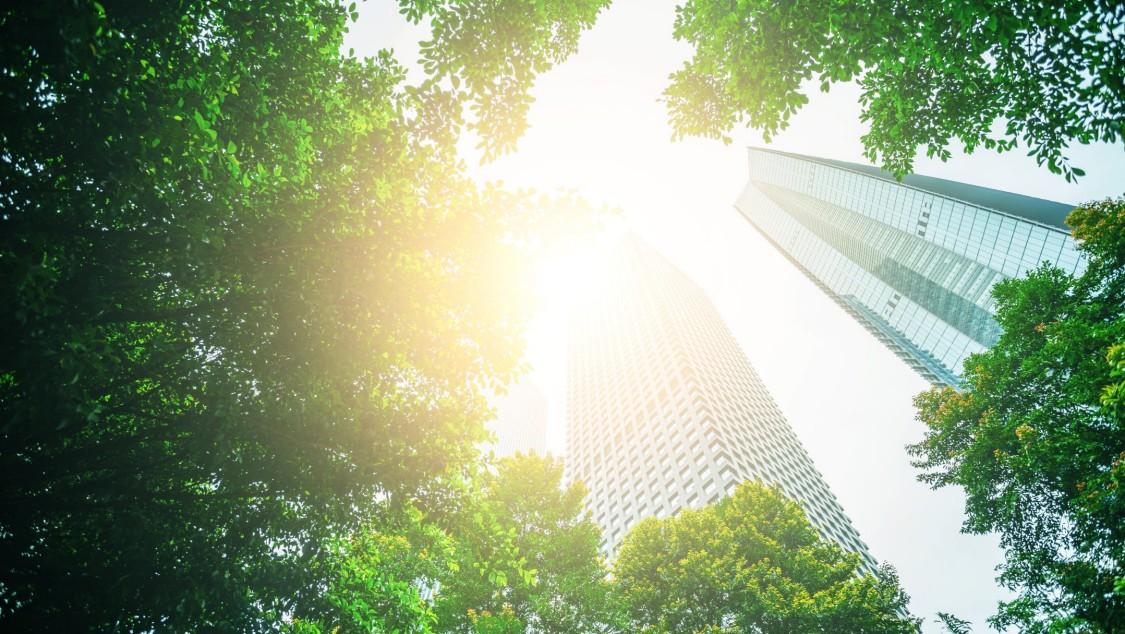 Bundesförderung für effiziente Gebäude (BEG) einfach erklärt