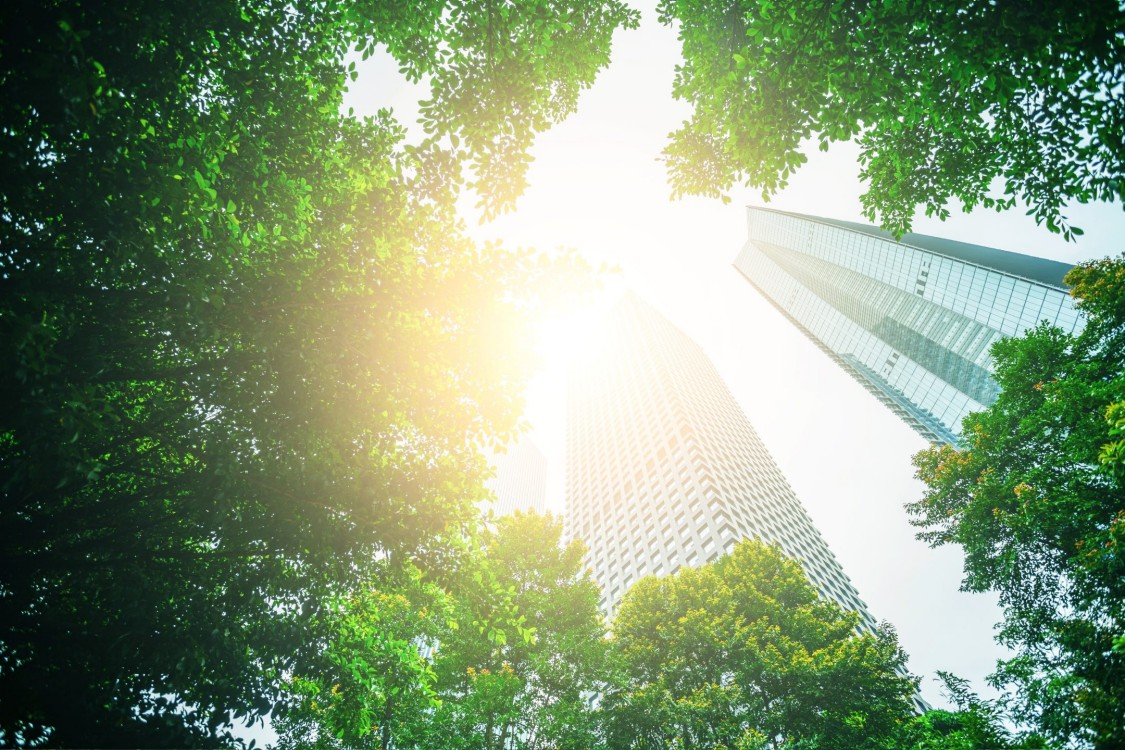 Energy and sustainability – the new competitive edge