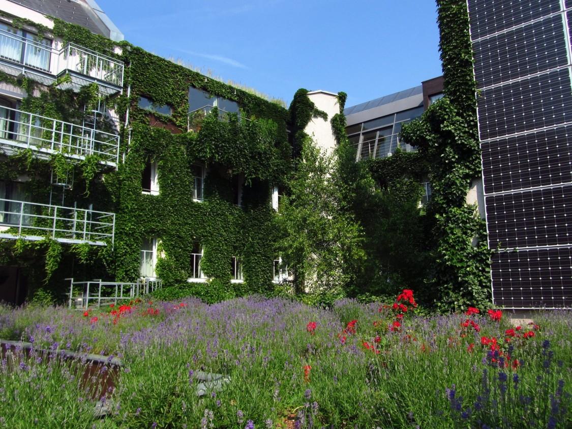 foto do jardim, do préido e das platas fotovoltaícas do hotel sustentável Stadthalle