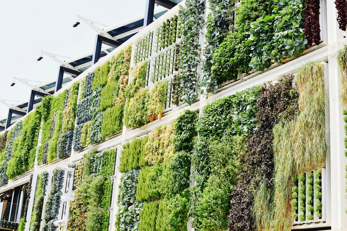 Sustainable energy building