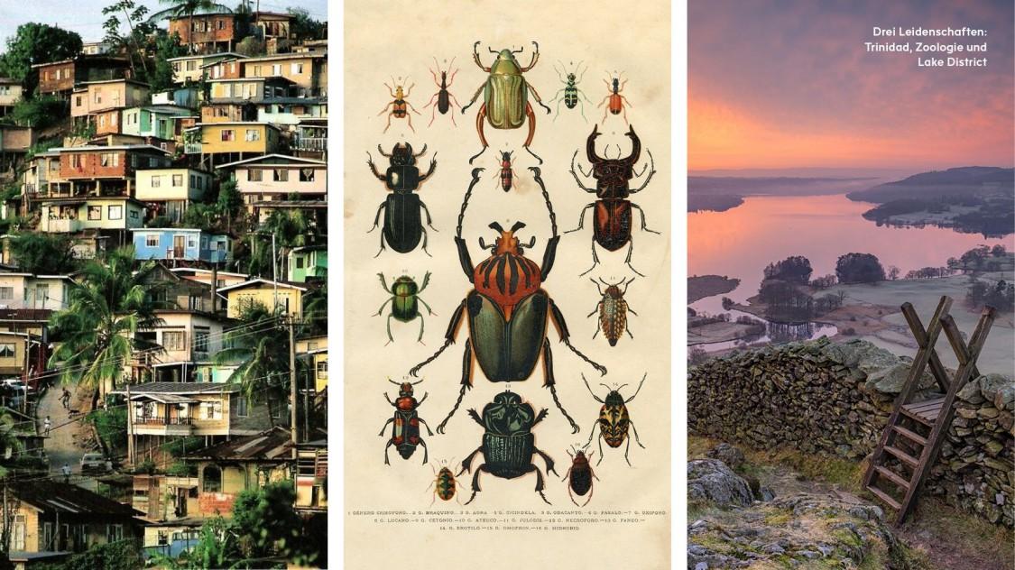 Drei Leidenschaften: Tinidad, Zoologie und Lake District