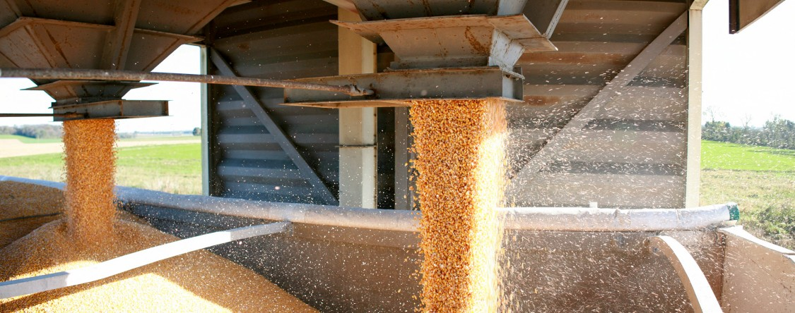 USA | Cereal flowing in a silo