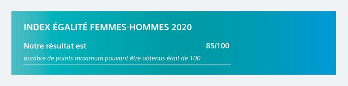 index égalité femmes hommes 2020