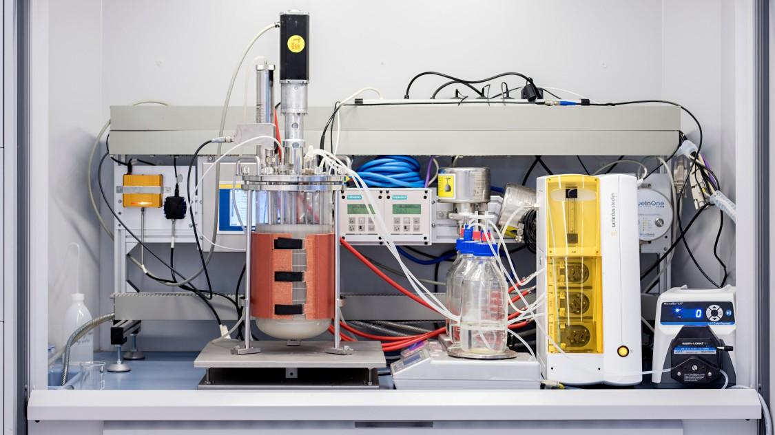 Während der Fermentation erfassen Sensoren und Analysegeräte Parameter wie beispielsweise pH-Wert oder Temperatur, die die Qualität des Bioprozesses beeinflussen.
