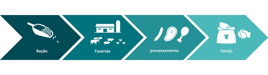 Siemens provides suitable solutions for all phases of the livestock value chain