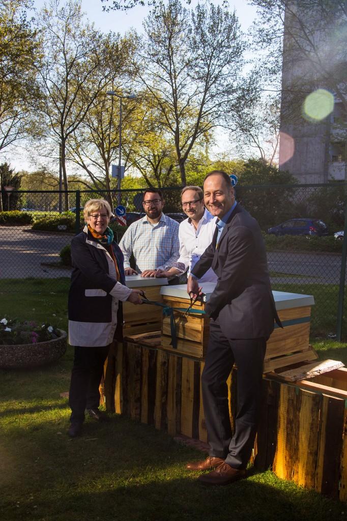 Bürgermeisterin Kubala und Siemens-Mitarbeiter stehen an den Bienenstöcken