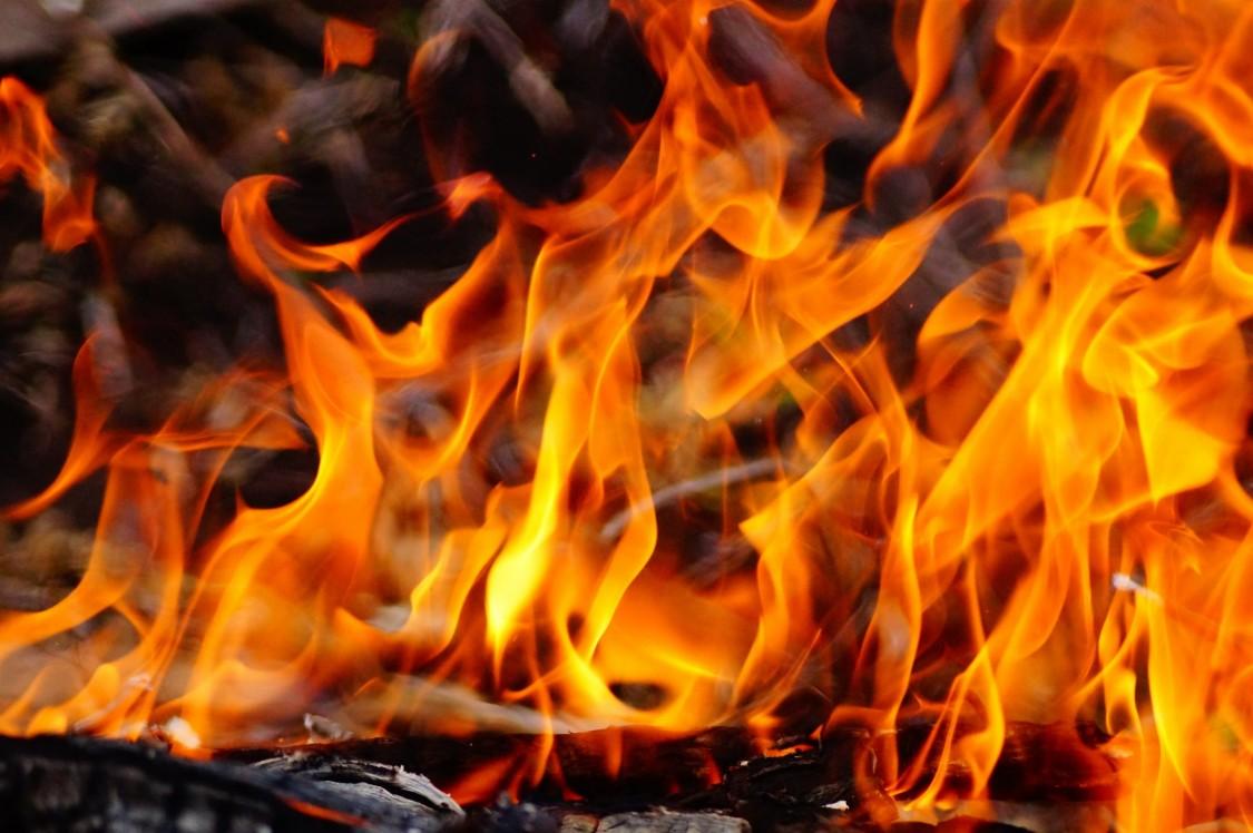 Минимизация рисков возникновения лесных пожаров с помощью Fusesaver