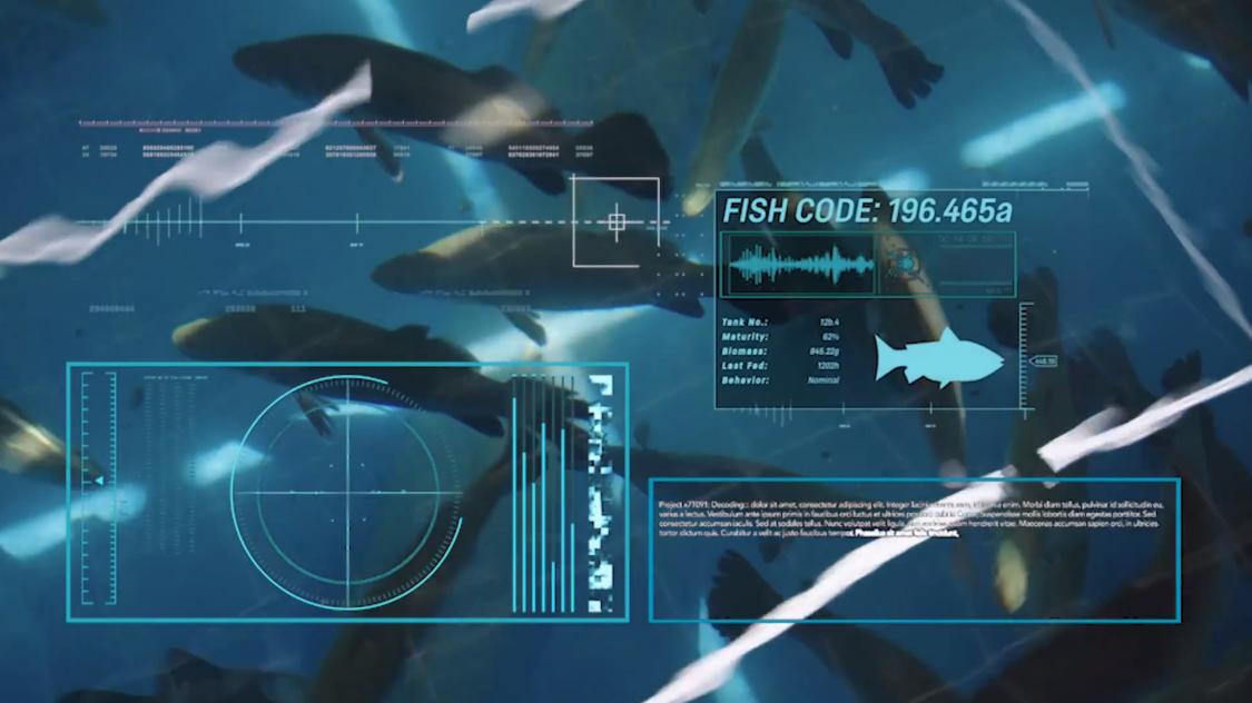 Singapore Aquaculture Technologies Smart Floating Fish Farm