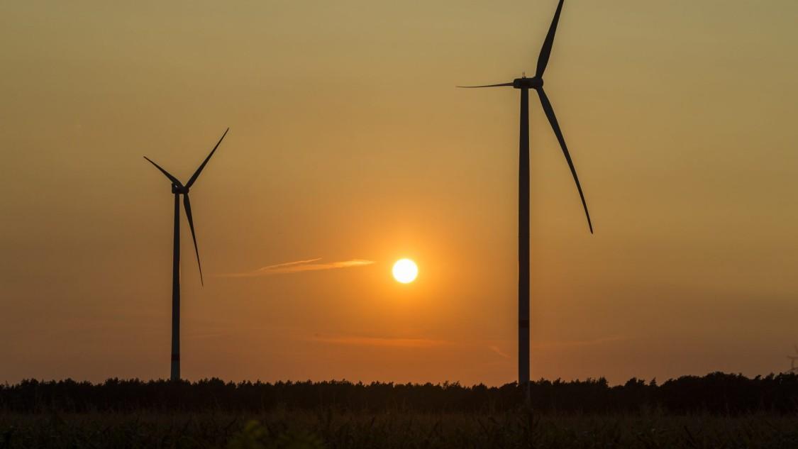 Zielona energia dla firmy Siemens