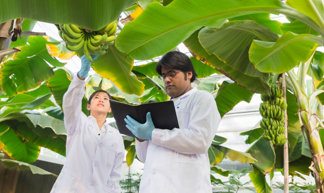 Siemens Center of Competence for the controlled environment agriculture industry