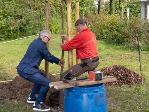 WORLD-ENVIRONMENT-DAY-2021-sustainability-tree-planting-canada-germany