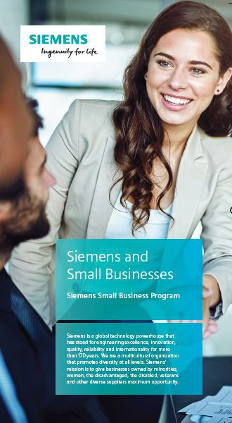 SGT Federal Small Business Brochure
