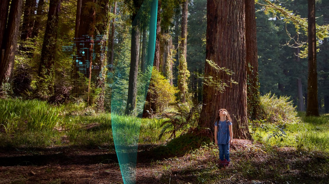 Little girl standing in a green forest looking up at the tall trees and sky