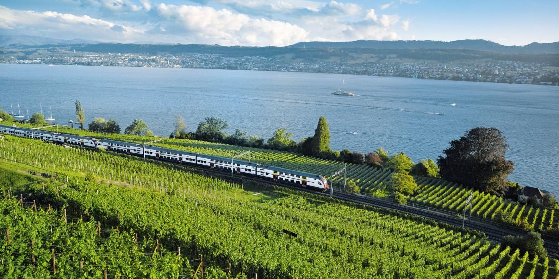 Sbb Zug fährt durch Schweizer  Landschaft mit See und Rebbergen