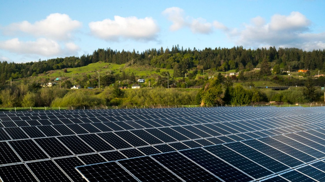 Großes Feld mit Solarpaneelen