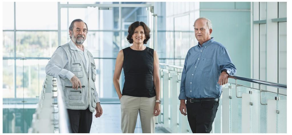 Outstanding Invention | Carmin, Blumenfeld, Segall
