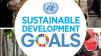 Sürdürülebilir Kalkınma için BM Gündemi 2030