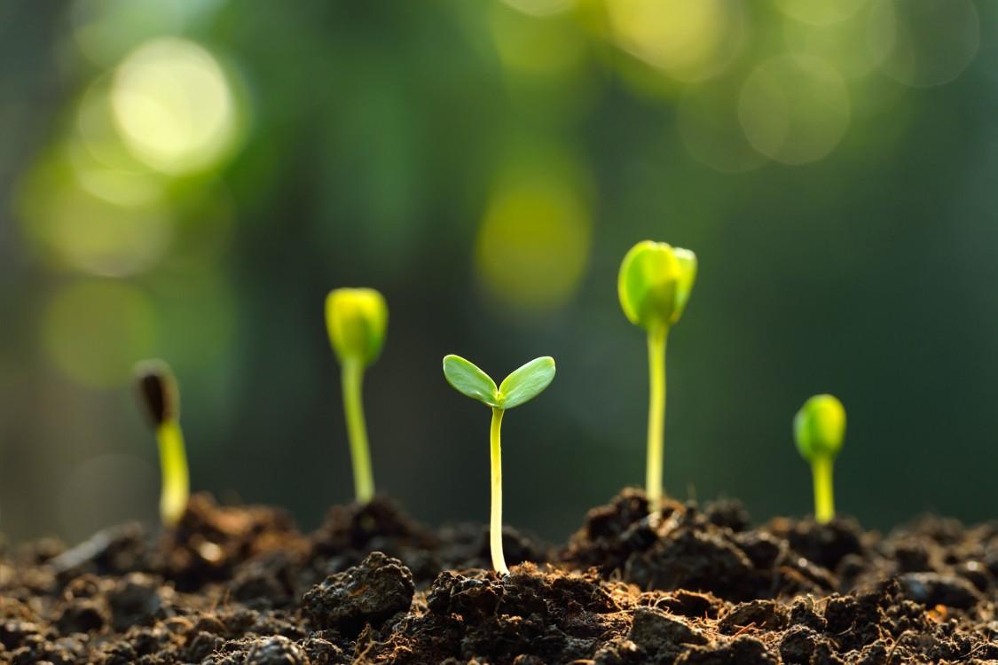 Mit intelligenten Agrartechnologien gestaltet die Landwirtschaft unsere Zukunft und diejenige kommender Generationen mit.