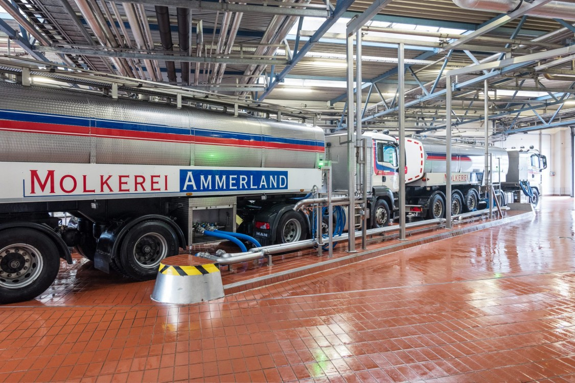 The motif shows a tank truck of the Molkerei Ammerland - photographed in a hall of the company. You can see the right side of the tank truck with the company logo. The floor of the hall is tiled in red and looks very clean and hygienic. A tangle of silver pipes runs through the hall.