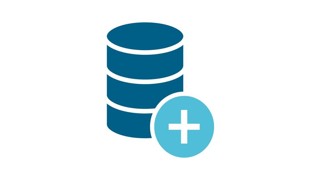 Icon Datenerfassung