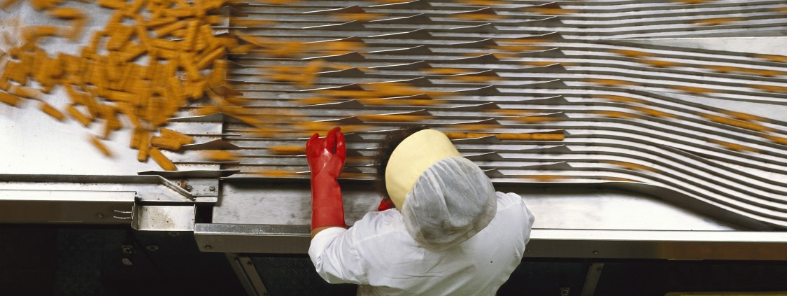 In a production facility for frozen food, an employee sorts fish sticks. The path from the producer to the consumer is fragmented and inefficient. Along the route from production to consumption, 32 percent of all food is wasted.