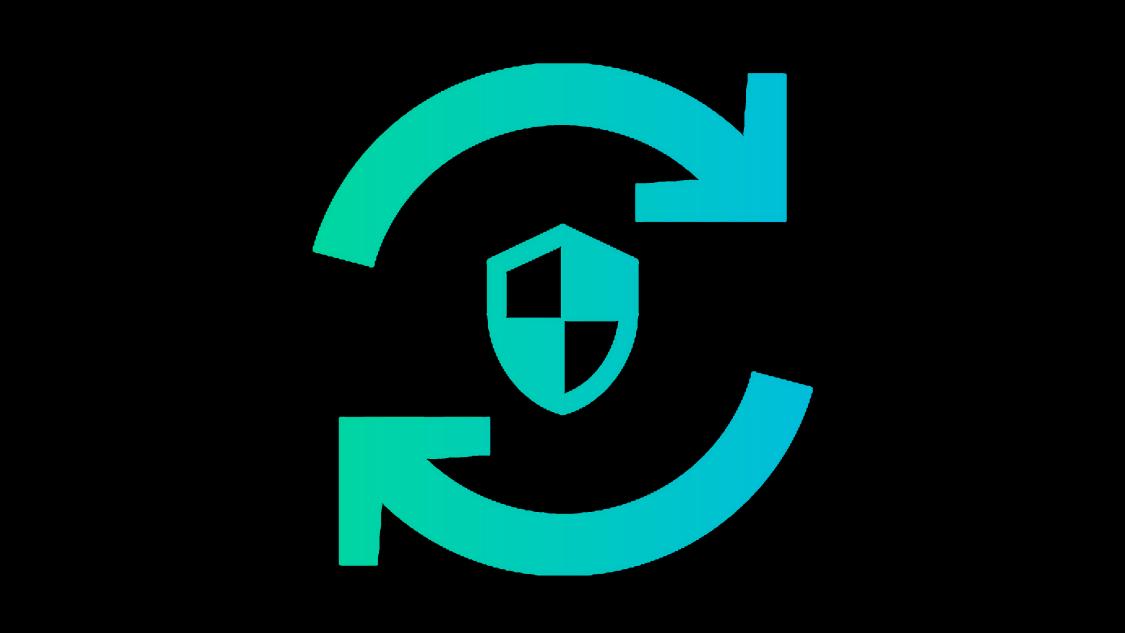 Icon Security level