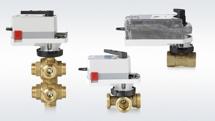Control ball valves