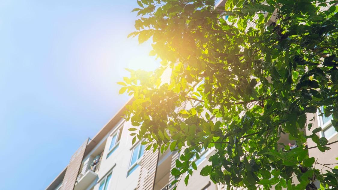 Green-Building-Zertifizierung