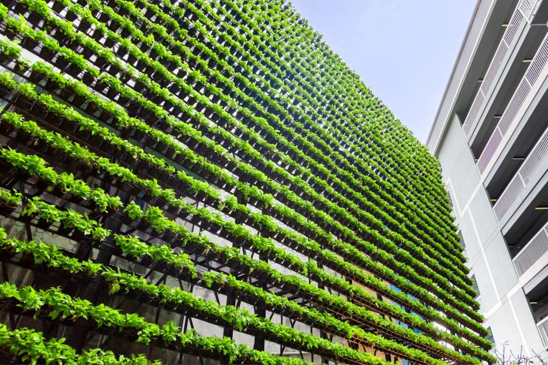 Energie und Nachhaltigkeit