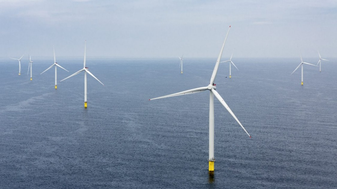 Offshore wind farm Westermost Rough