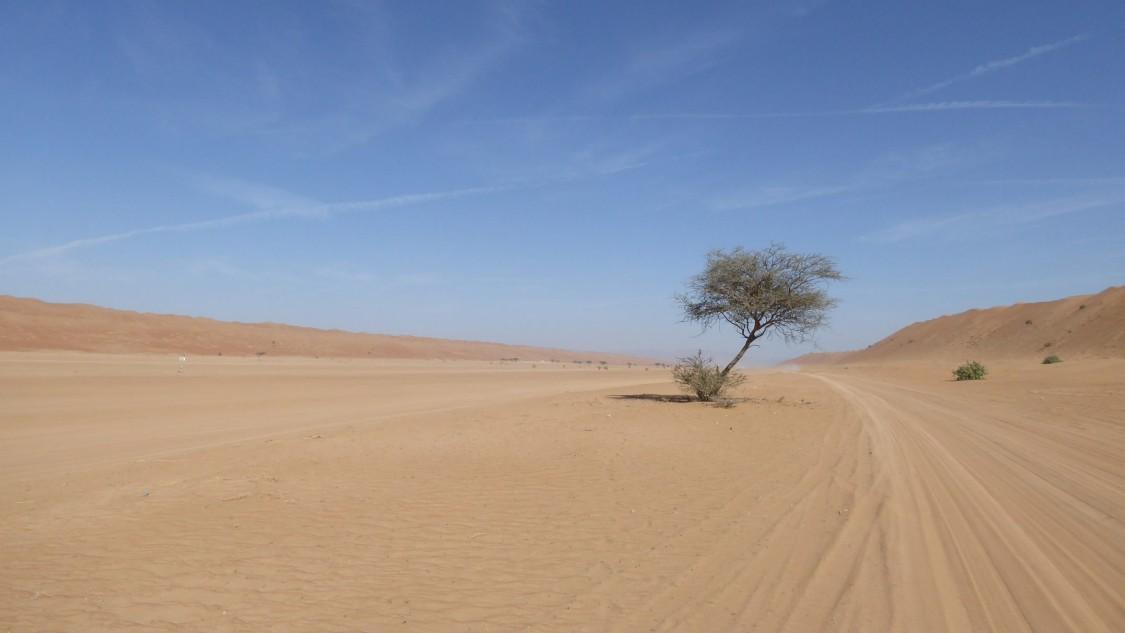 Petroleum Development Oman | Naher Osten | Öl und Gas
