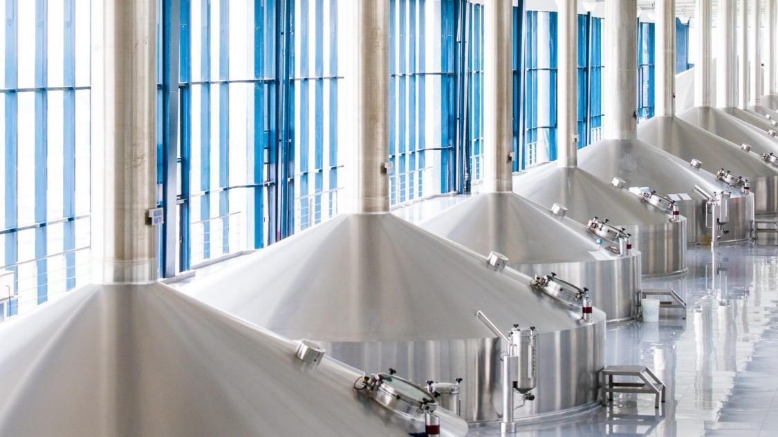 Constellation Brands Inc., Nava brewery