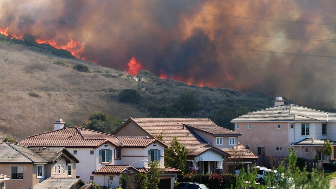 Brush fire behind a row of homes