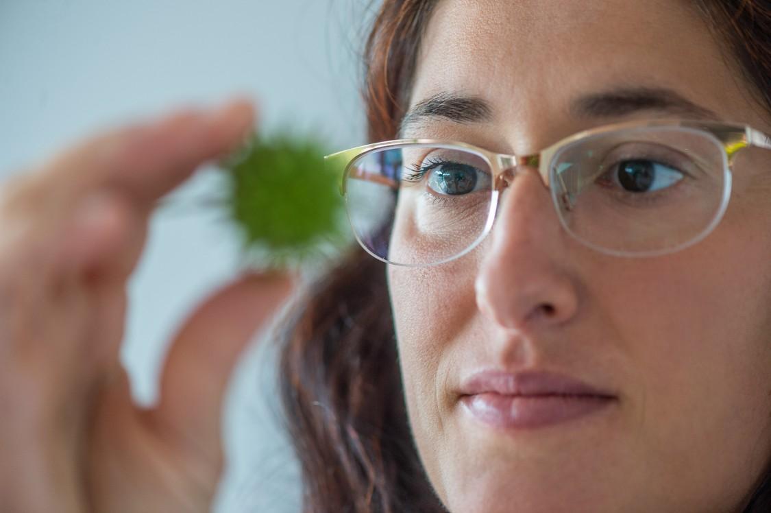 Portrait of Lucia Mirabella