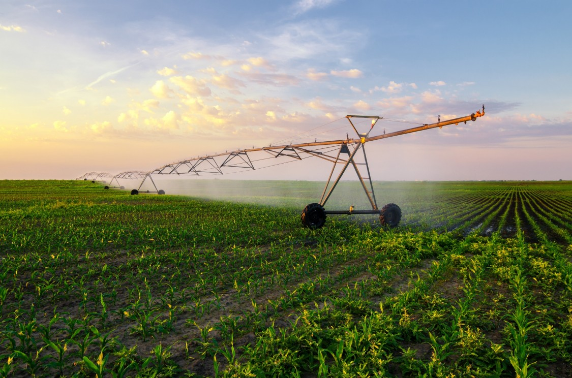 Behind the Tech: How to feed a growing world: Why the next Agricultural Revolution is digital