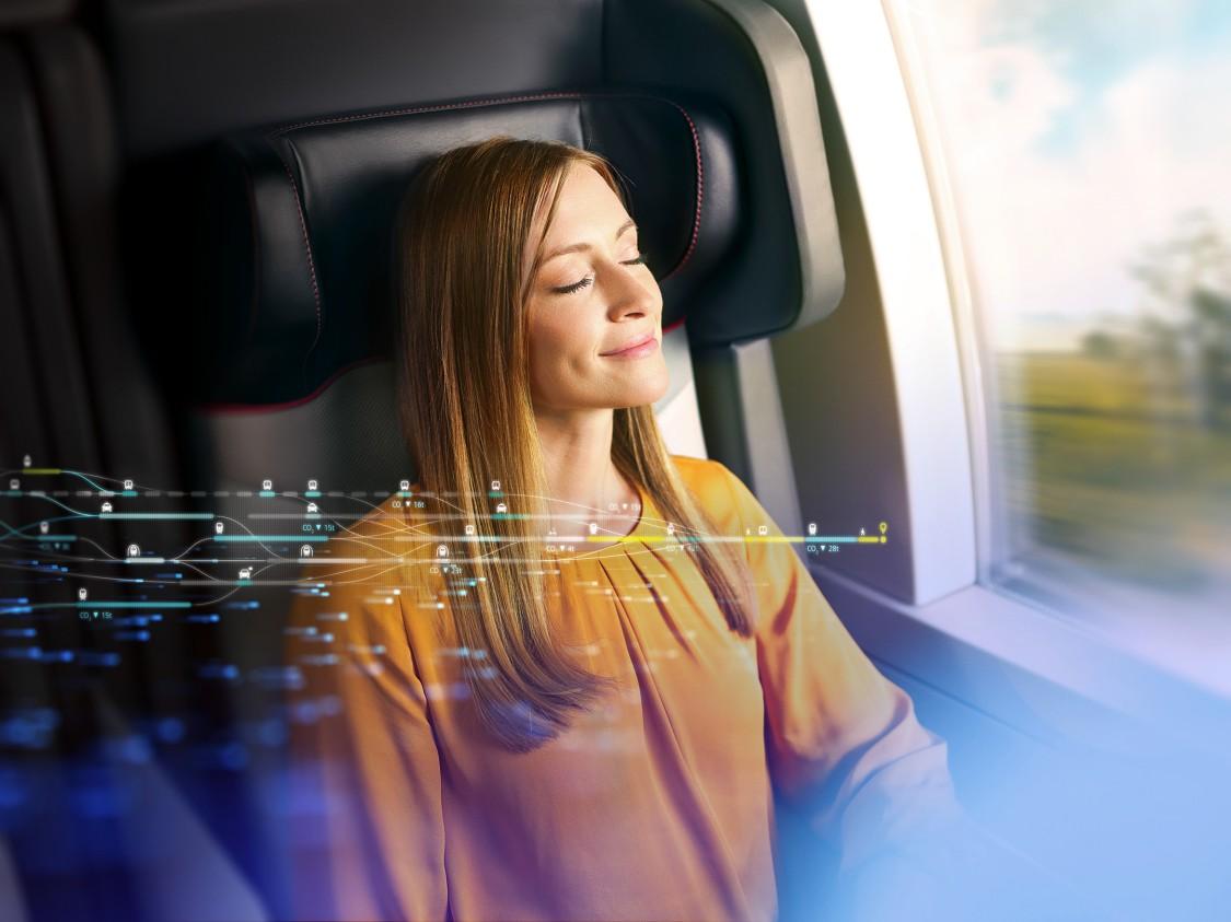 Passenger Information Plus